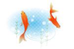 金魚のイラスト関係