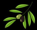植物・自然